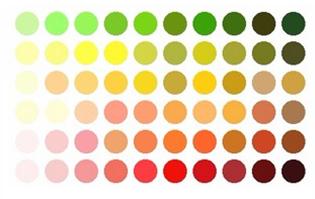 התאמת צבע לגוון העור