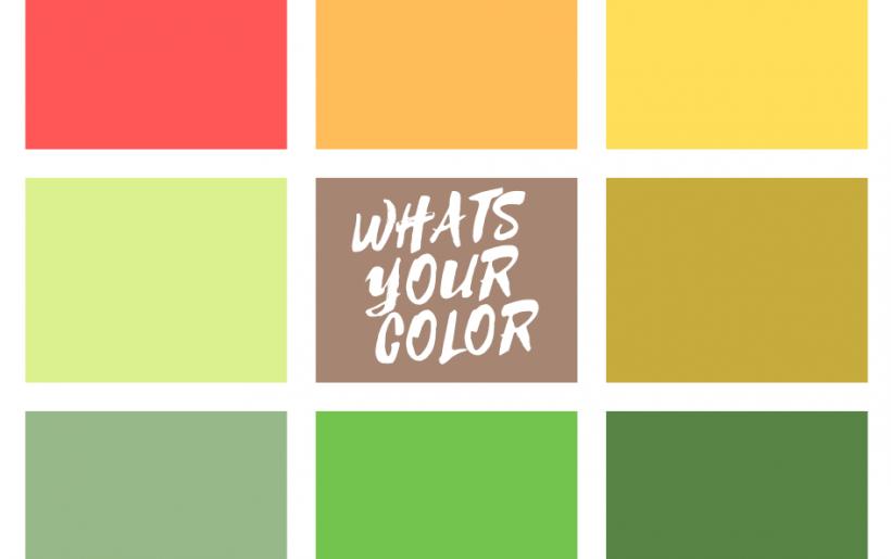 מה הצבע שלך
