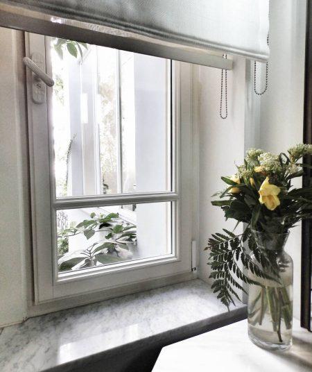 חלון פרחים ירוק צמחייה פסח ניקיון