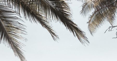 ים קיץ חוף בגד ים בחורה בחורות מרענן מים משקפי שמש אינסטגרם ירוק עצים טבע