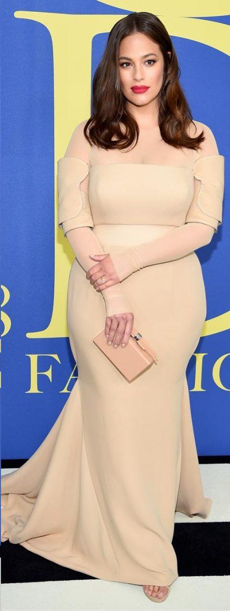 אשלי גרהאם ניוד שמלה vera wang CFDA פרס אירוע נוצות אופנה אירוע משפיענית פשנגה